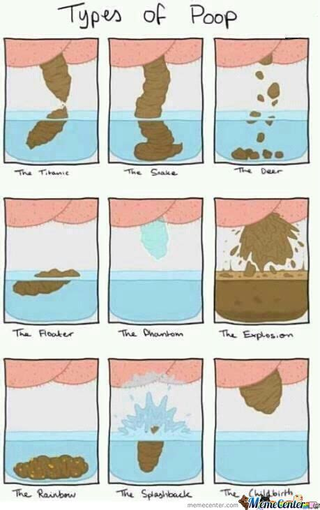 Different Types Of Memes - types of poop by noneoftheabove meme center