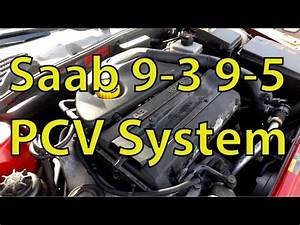Saab 9 3 And 9 5 Checking The PCV System Version