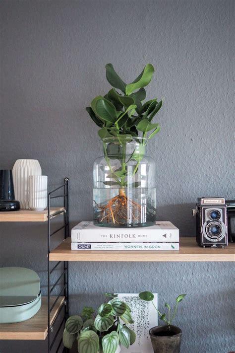 Wohnzimmer Pflanze Groß by Pflanzen Deko Wohnzimmer Pflanzen Wohnzimmer Wohnzimmer
