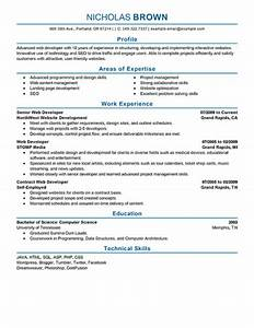 Business Development Resume Examples Resume Examples