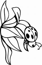 Coloring Bugs Printables Bug Enjoyed Try Then Painting Central sketch template