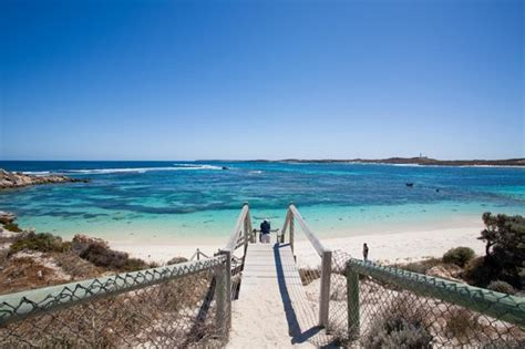 Boat Service Joondalup by Beautiful Beaches Picture Of Rottnest Fast Ferries Day