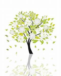 Baum Mit Blüten : sch ne sommer baum mit bl ten blumen vektor illustration stock vektor ~ Frokenaadalensverden.com Haus und Dekorationen