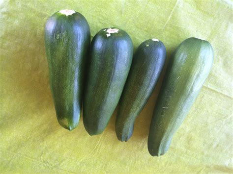 Freezing Stuffed Zucchini Boats by Zucchini Coming Out Of My Ears 110 Pounds And Counting