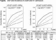 Comparable Prognostic Impacts Of Bnp Levels Between Hfpef