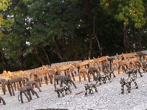 chandigarh rock garden zoo section india tripadvisor save sector