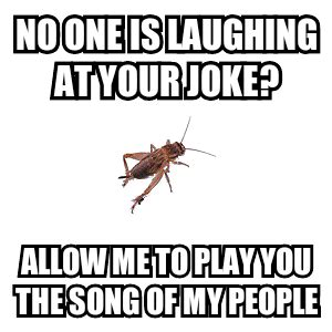 Crickets Chirping Meme - pics for gt crickets chirping meme