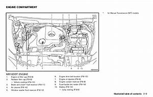 Nissan Juke 1 6 Engine Diagram  Nissan  Auto Wiring Diagram