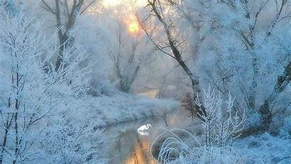 Frost Winter Backgrounds Wallpapers Desktop Background Widescreen