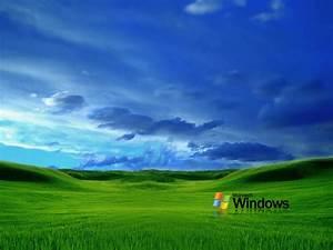 wallpapers: Grass Windows XP Wallpapers