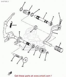 Buick Terraza Fuse Box Wiring Diagram  Buick  Auto Fuse