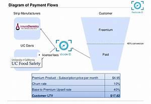 Diagram Of Payment Flows Strip