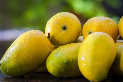 Top 6 Places In India For Best Mangoes