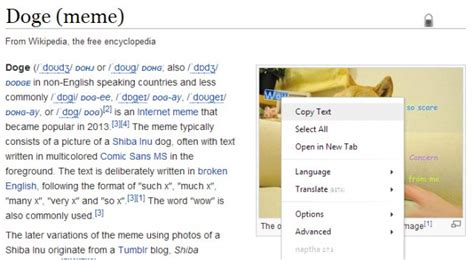 Doge Meme Font - finally a browser add on that lets you copy and paste text out of images and memes extremetech