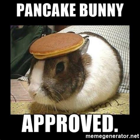 Pancake Meme - pancake bunny approved bunny with pancake on head meme generator