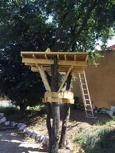 Comment Faire Une Cabane Dans Les Arbres : fixation cabane dans les arbres comment fabriquer une cabane dans les arbres plan cabane dans ~ Melissatoandfro.com Idées de Décoration