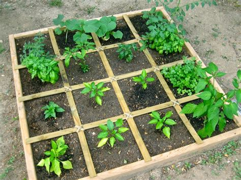 Square Foot Gardening by How To Plan A Square Foot Vegetable Garden The Easiest