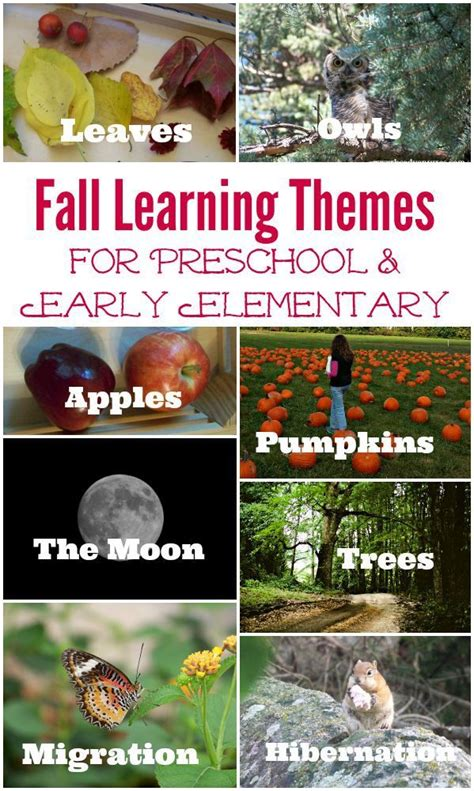 12817 best after school activities amp adventures images on 312 | a82a787e1bf23230390c01d32c448632 themes for preschool fall preschool