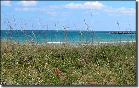 fort pierce inlet state park florida state parks