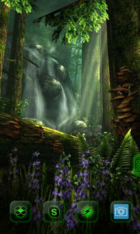 haram world forest hd   wallpaper  android