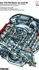Audi S6 5 2 Liter Fsi V10 Engine Diagram 1 Of 21