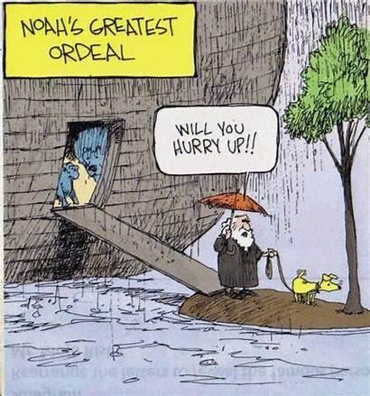 Cartoon Dog Noah Funny Greatest Ordeal Noahs