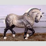 Dapple Grey Thoroughbred | 400 x 314 jpeg 40kB