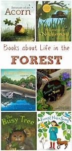 10, Children, U0026, 39, S, Books, About, Forest, Life, U0026, Woodland, Animals