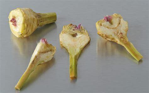 comment cuisiner les artichauts violets en images comment utiliser l artichaut petit violet