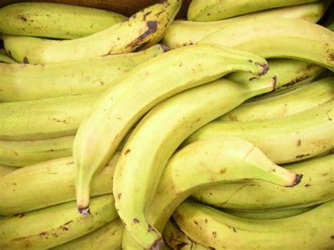 comment cuisiner des bananes plantain les vertus des fruits