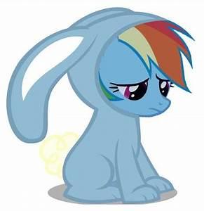 What type of pony is Rainbow Dash? - The My Little Pony ...