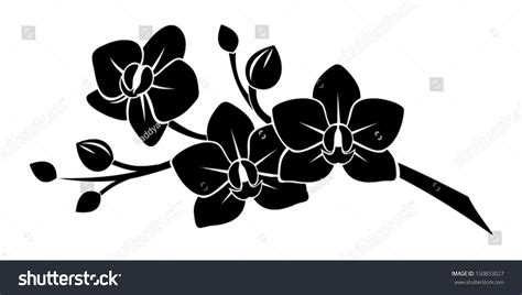black silhouette  orchid flowers vector illustration