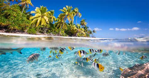 si鑒e air caraibes zboruri ieftine catre caraibe 368 p insulele virgine 400 p travelator