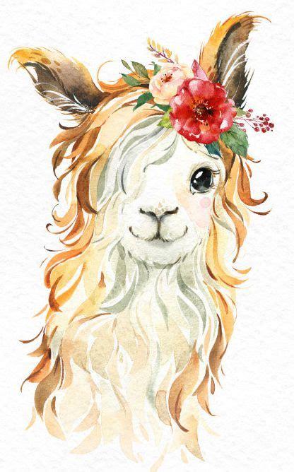 pequenas llamas acuarela animales clipart alpaca