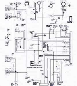 Service Owner Manual   1985 Ford F250 Pickup Wiring Diagram