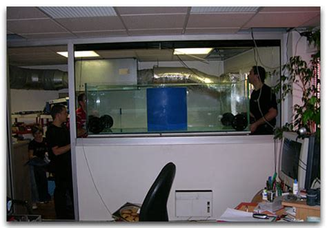 bureau aquarium l 39 aquarium de chris péripécies et amis d 39 abri sous roche