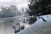Wir lieben Karlsruhe im Winter | Karlsruhe, Winter, Leise ...