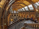 Natural History Museum in London, England - Tourist ...