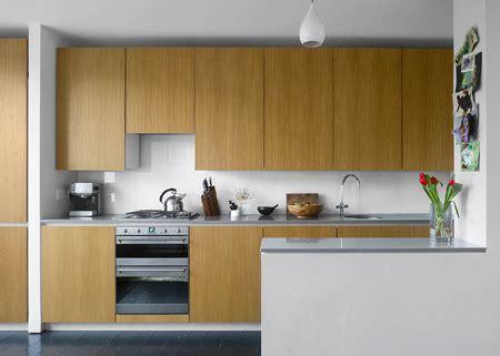 kitchen plywood designs home dzine kitchen plywood kitchen designs 2452