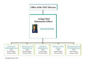 CIO Organization Structure Chart