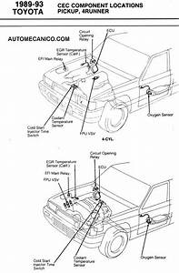 1994 Toyota Pickup Cold Start Injector Location  1994  Free Engine Image For User Manual Download
