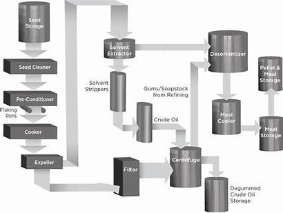 Canola Processing Oil Pressing Diagram