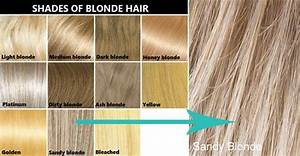 Hair Color Dye Chart Pictures Highlights