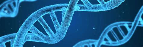 Epigenetics and Developmental Biology Area of Expertise ...