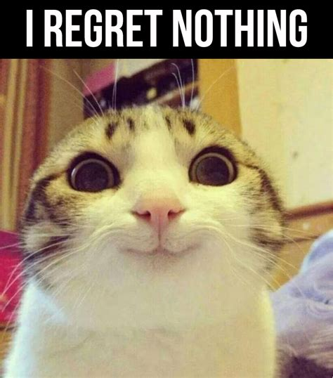 Nothing Meme I Regret Nothing Humor Memes