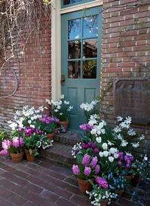 Tulpen Im Topf In Der Wohnung : gartengestaltung ideen mit fr hlingsblumen die sch nheit der tulpen spring ~ Buech-reservation.com Haus und Dekorationen