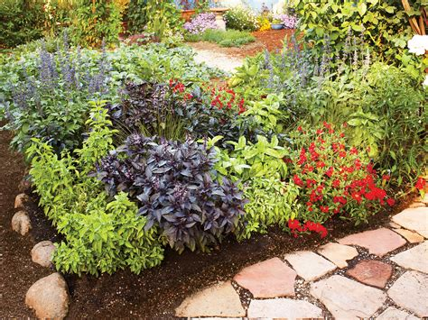 colorful easy care spring borders sunset magazine