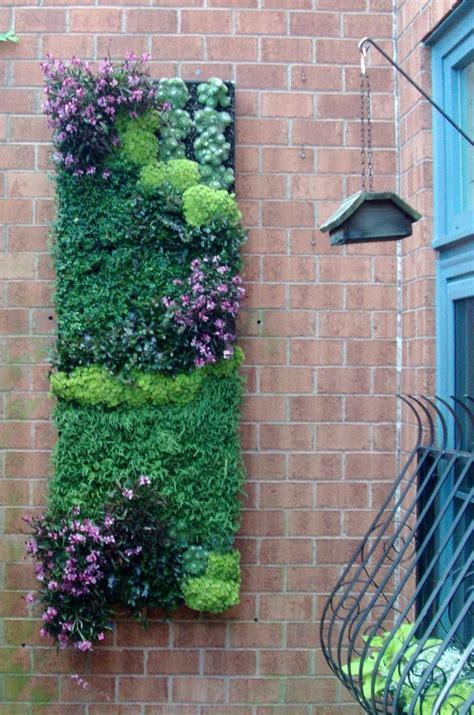 Ein Vertikaler Garten Selber Bauen  Schritt Für Schritt
