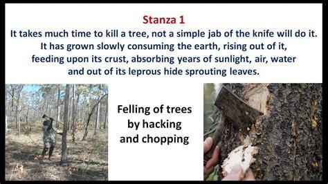 killing  tree cbse english poem class  youtube