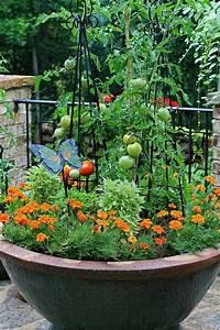 Gemüse Auf Dem Balkon : gemuse auf dem balkon anbauen sorten geeignet ~ Lizthompson.info Haus und Dekorationen